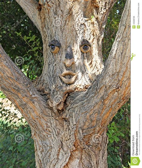 tree with tree with expression you stock photo