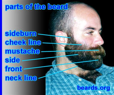 choosing a cheek line for your full beard all about beards beard terminology all about beards