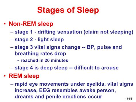 Five Stages Of Sleep Essay by The Five Stages Of Sleep Characteristics Of Non Rem Rem Autos Post