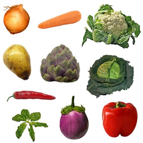 vegetables 100 pics vegetables on white background free stock photo