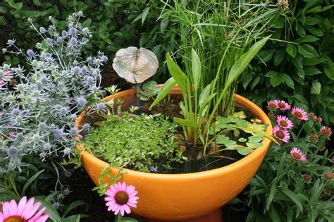 Backyard Koi Ponds & Water Garden Installation in