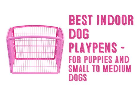 indoor playpen for dogs the best indoor playpen for small to medium dogs my shiba inu
