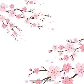immagini fiori di ciliegio fiore di ciliegio foto e vettori gratis