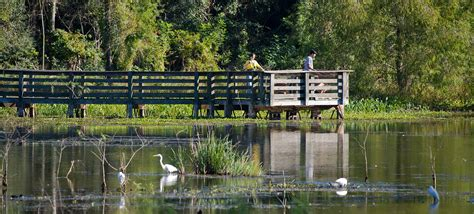 Brazos Bend State Park Cabins by Brazos Bend State Park Parks Wildlife Department