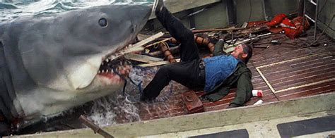 Shark Rage 1916 20 Animated Horror Gifs Dread Central