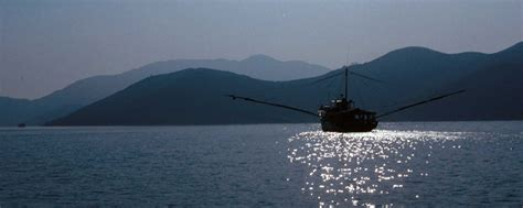 HK Fish Net - Home