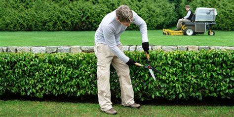 hire a landscaper in 8 simple steps