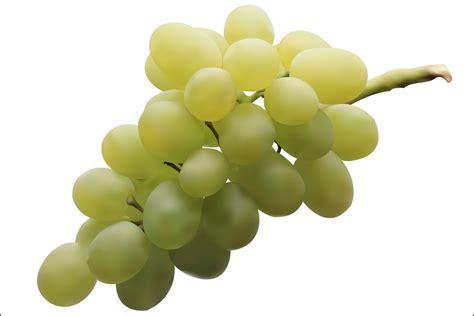 imagenes de uvas reales vendido un racimo de uvas en jap 243 n por 4 000 euros info