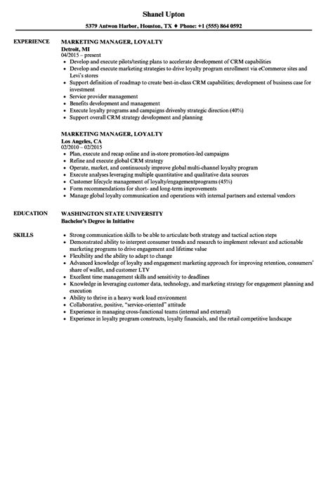 resume format for experienced marketing manager marketing manager loyalty resume sles velvet
