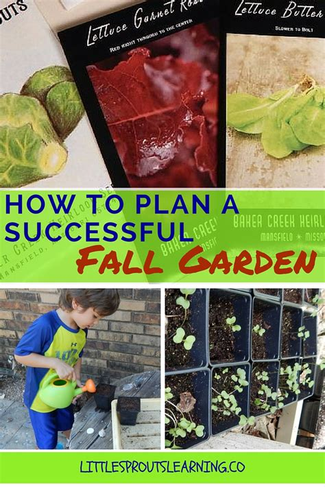 how to start a profitable backyard plant nursery pdf how to plan a successful fall garden little sprouts learning