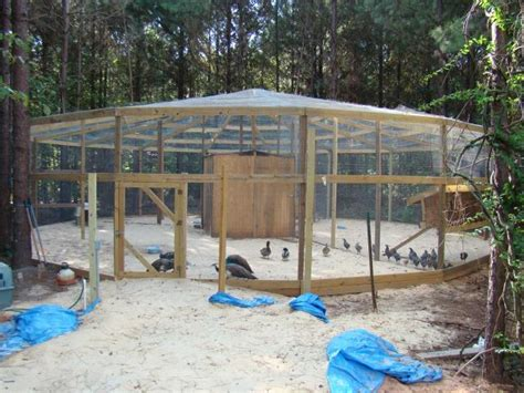 Backyard Aviary Ideas Outdoor Finch Aviary Plans House Design And Decorating Ideas