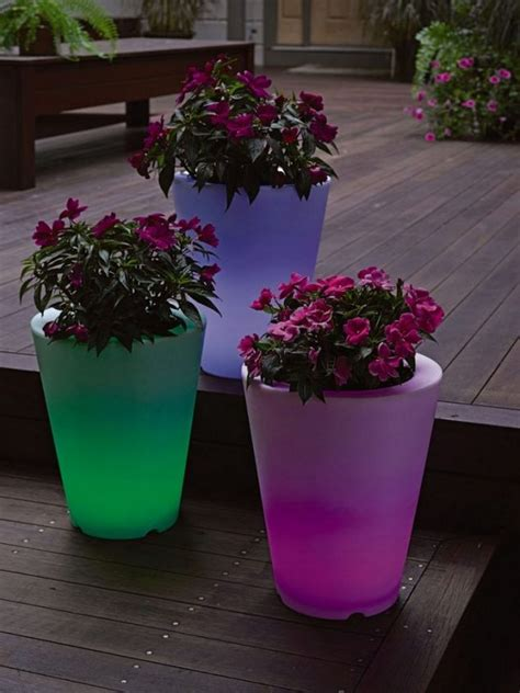illuminated planters for a look of the backyard