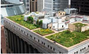 chicago s green rooftop experiment shareamerica