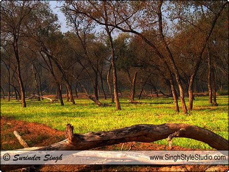 Landscape Photography In India Singh Style Studio New Delhi India