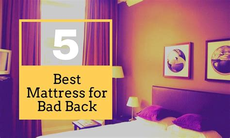 best bed for bad back the 5 best mattress for bad back hovement com