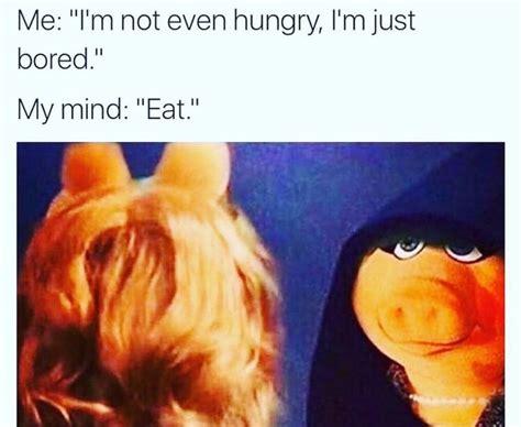 Ms Piggy Meme - best 25 miss piggy meme ideas on pinterest
