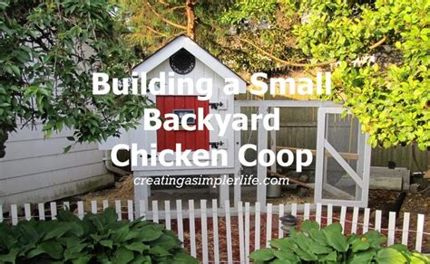 small backyard chicken coop building a small backyard chicken coop creating a