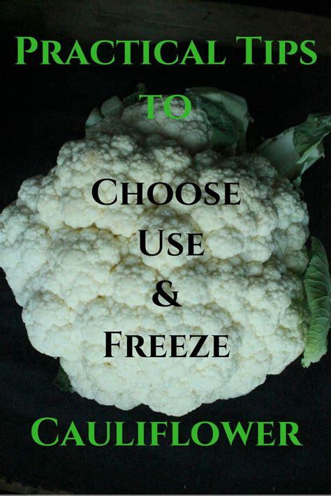 25 b 228 sta freezing cauliflower id 233 erna p 229 pinterest paleorecept paleodieten och ketorecept