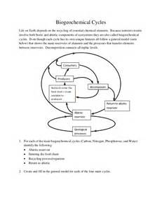 biogeochemical cycles worksheet abitlikethis