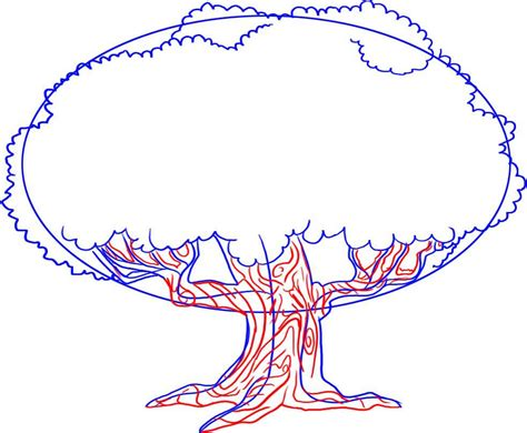 Cherry Blossom Tree Facts how to draw a tree dr odd