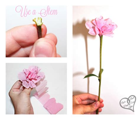 How We Make Paper Flower - we lived happily after carnations and peonies out of