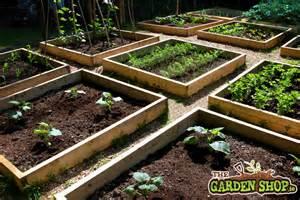 Raised Garden Layout Raised Bed Layout Howtogarden Ie
