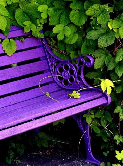 outdoor bench colors purple and green color inspiration bright bold and