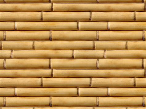 wallpapers for walls wallpapers bamboo wall wallpapers