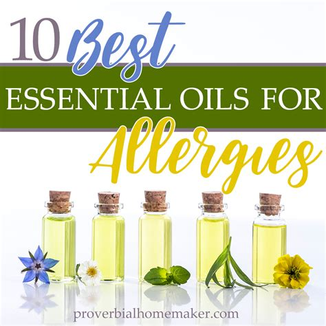 essential oils for allergies essential oils archives proverbial homemaker