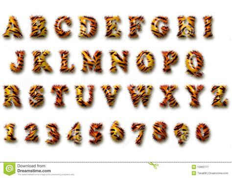 tiger pattern font tiger font stock illustration image of text calligraphic
