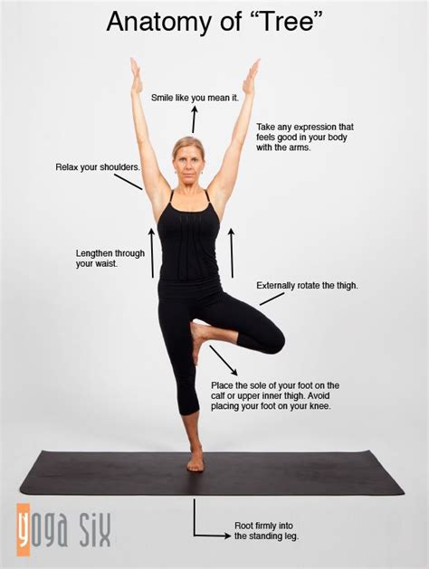 boat pose teaching points 18 yoga poses anyone can learn to do