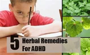 Herbs For Adhd » viral wallpaper