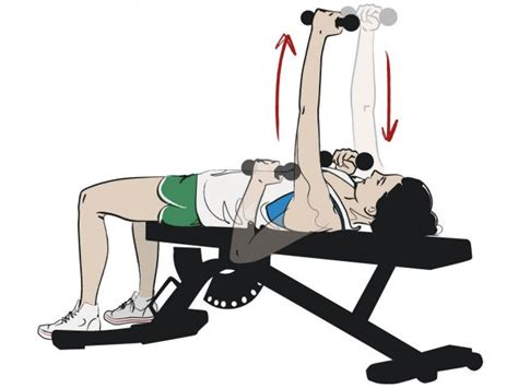 seated chest press vs bench press alternating dumbbell press images