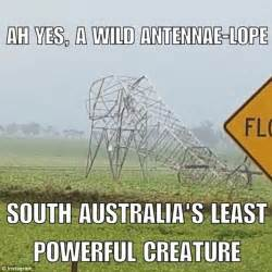 Meme Australia - south australians describe the worst storm in 50 years