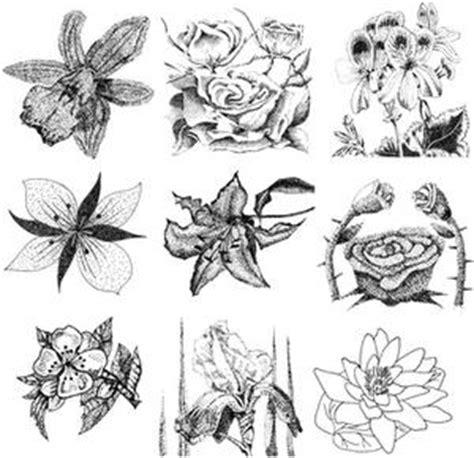 come disegnare fiori come disegnare un mazzo di fiori russelmobley