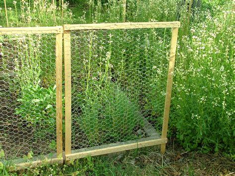 fence unique chicken wire fence design chicken wire home