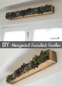diy horizontal succulent planter box display