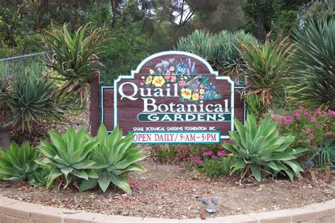 Quail Botanical Garden San Diego Botanic Garden Letsgoseeit