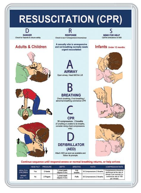 printable cpr instructions 2015 cpr information sheet related keywords cpr information