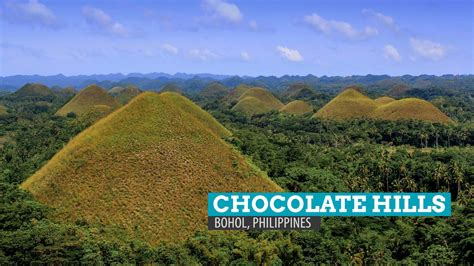 Buro L by The Chocolate Tales Of The Giants Of Bohol