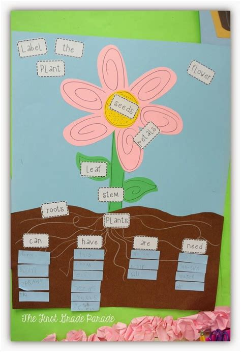 the first grade parade the plants dance 75 best images about teaching plants on pinterest math