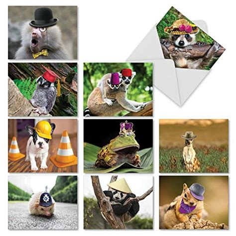 Sweet And Sassy Gift Cards - m6470ocb capped creatures 10 assorted blank all occasion note cards featuring sweet