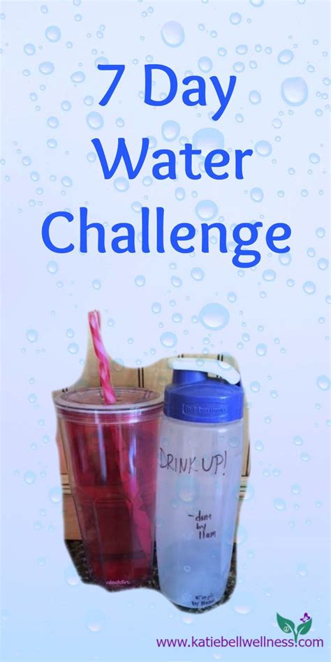 water weight loss challenge 25 best ideas about water challenge on diet