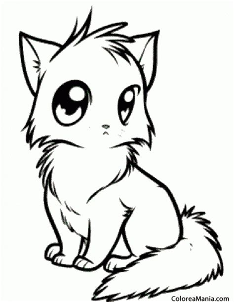 imagenes ojos para colorear dibujo de gato ojos pictures to pin on pinterest pinsdaddy