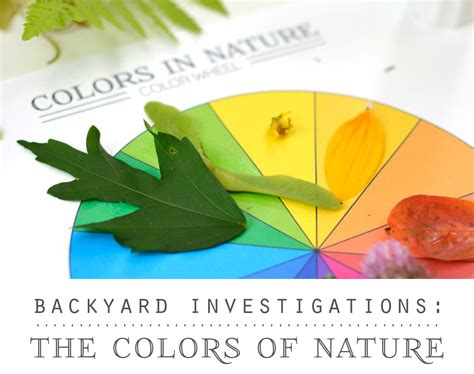 backyard science abc backyard science abc backyard science the colors of nature