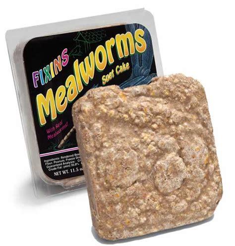 mealworm suet cake