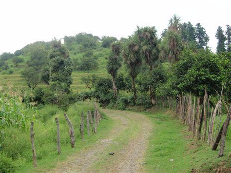 file batumi country road jpg