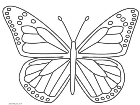 imagenes para pintar mariposas dibujos de mariposas para colorear