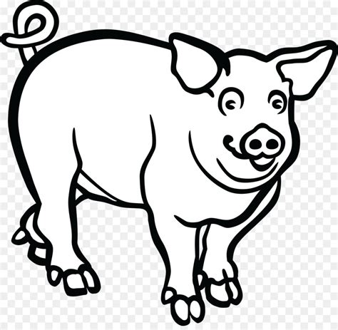 pig clipart black and white clipart pig black and white graphics illustrations