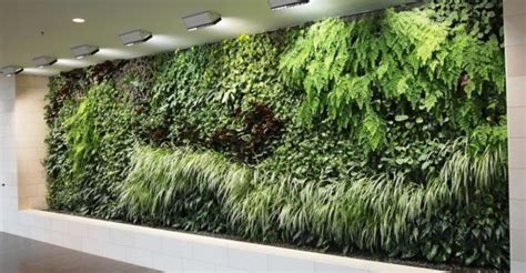 giardino verticale interno paretiverdi l illuminazione artificiale delle pareti